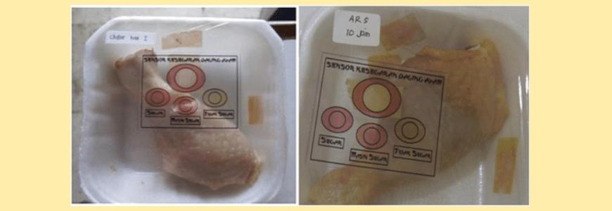 Embalagem ativa, frango, deterioração